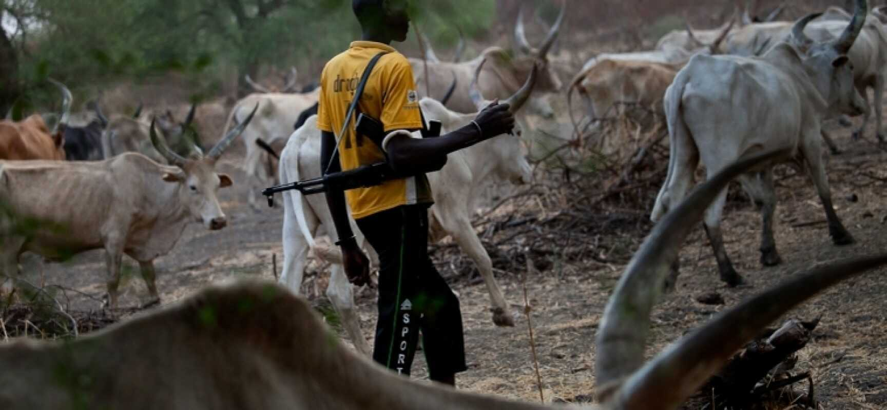 Photo of If you want to enjoy Peace in your State, create a particular Area for Fulani – Herdsmen warn Governors.