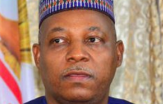 Photo of I Wouldn't Mind being a Cabal – Shettima