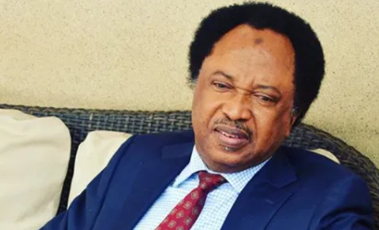Photo of High Court grants Shehu Sani Bail.