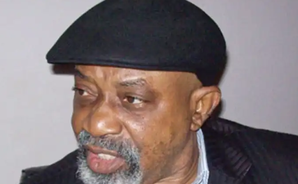 Photo of Don't rely on Government Jobs – Ngige