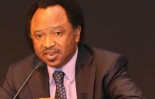 Photo of This is a good Time to prove you are for Everybody – Sani urges Buhari not to cancel his Trip to Bayelsa