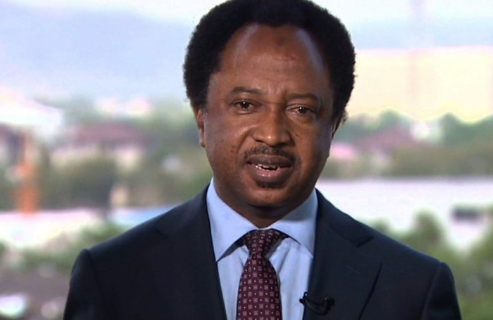 Photo of Shehu Sani sends Condolence Message to Nnamdi Kanu