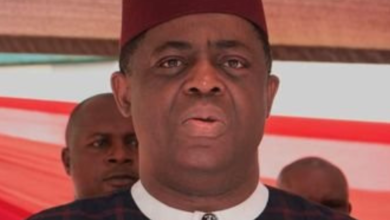 Photo of Ex-Minister, Fani-Kayode To Make Nollywood debut