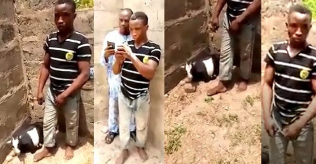 Man caught having Sex with Goat in uncompleted building. 1