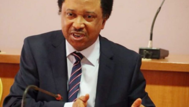 Photo of Stop talking about hunger in Nigeria so they don't come for you – Shehu Sani tells Sultan of Sokoto
