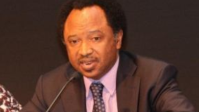 Photo of Don't let them drag you into partisan Politics – Shehu Sani tells Sanusi