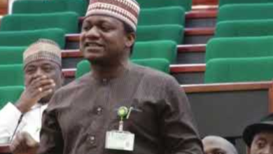 Photo of Provide Basic Amenities at no cost – House of rep Member tells FG