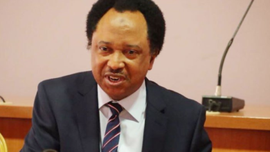 "Photo of ""Mass illiteracy and ignorance in Kano aggravates COVID-19 – Shehu Sani"