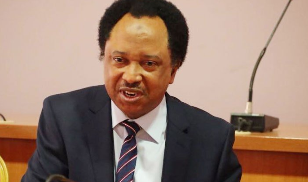 """Mass illiteracy and ignorance in Kano aggravates COVID-19 - Shehu Sani 1"
