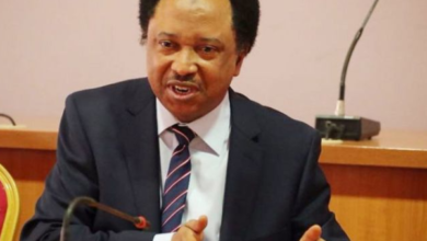 Photo of Shoprite's exit will help local supermarkets grow – Shehu Sani
