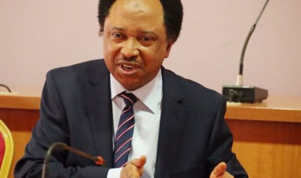The Government should support the Private Sector to save millions of Jobs - Shehu Sani 1