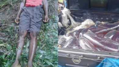 Photo of 27-year-old crushed by Van conveying Policemen in Imo state