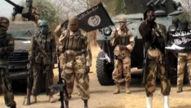 Photo of Nine Boko Haram members killed after an ambush by Nigerian Army