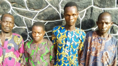 Photo of Three Friends caught with fresh human Hand in Ogun
