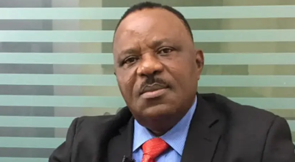 Buhari should replace his Mercedez Benz with Innoson vehicle - SKC Ogbonnia 1
