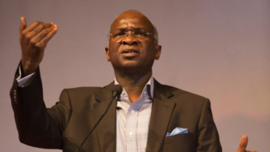 Photo of Nigerians are disappointed because they are looking for results in the wrong place – Fashola