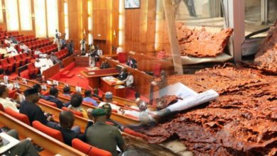Photo of Drama in Senate as RMRDC boss lists 'Kilishi' as Major Research Breakthrough in 33years