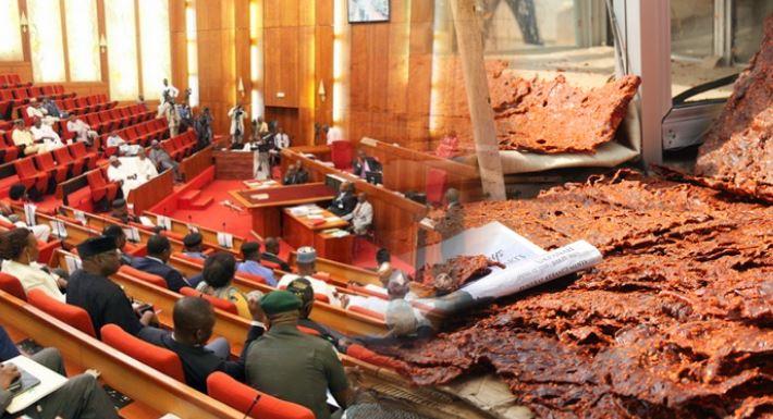 Drama in Senate as RMRDC boss lists 'Kilishi' as Major Research Breakthrough in 33years 1