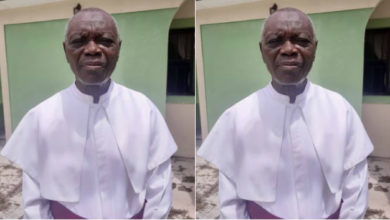 Photo of All the troubles in the world result from eating meat and fish- clergyman, David Irefin