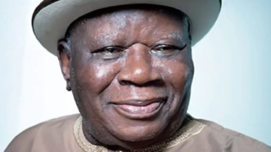 Photo of Naming of Railway Complex in Agbor after Jonathan was an insult – Edwin Clark