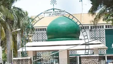 Photo of Kaduna State House of Assembly approves castration as punishment for Rapists