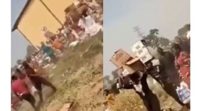 Photo of 'Come and collect free food' – Looters shout as they cart away palliatives stored in Adamawa govt warehouse (video)