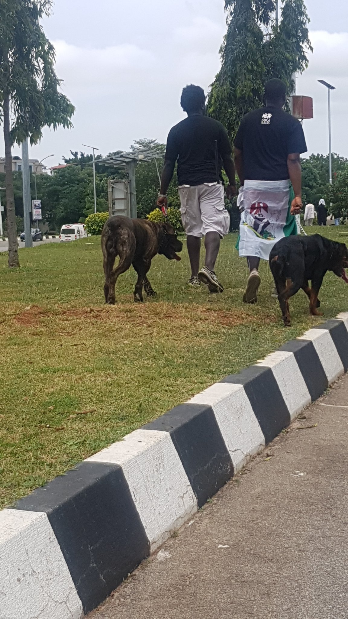 #EndSARS: Thugs allegedly back down after protesters arrived with fierce dogs at protest location in Abuja (photo) 10