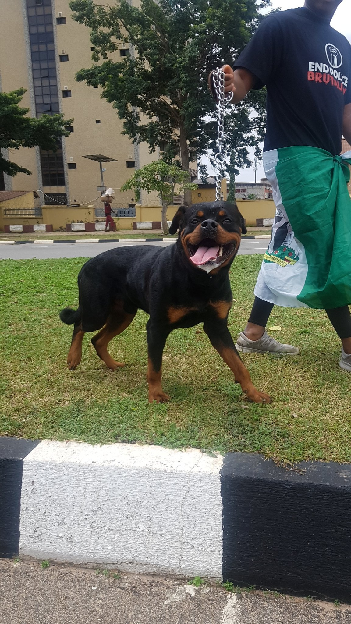 #EndSARS: Thugs allegedly back down after protesters arrived with fierce dogs at protest location in Abuja (photo) 9