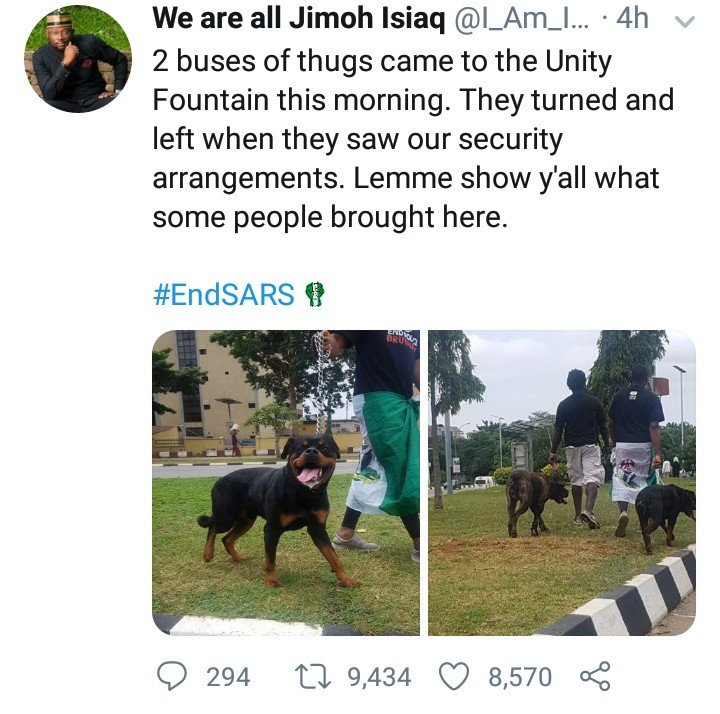 #EndSARS: Thugs allegedly back down after protesters arrived with fierce dogs at protest location in Abuja (photo) 8