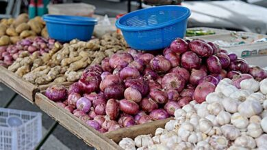 Photo of Nigeria's inflation hits 14.23 percent as food prices increases