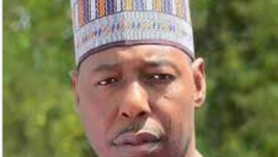 """Photo of Poverty: """"Insurgents offered as low as between 5,000 and 10,000 Naira to recruit some spies and smugglers of weapons""""- Governor Zulum"""